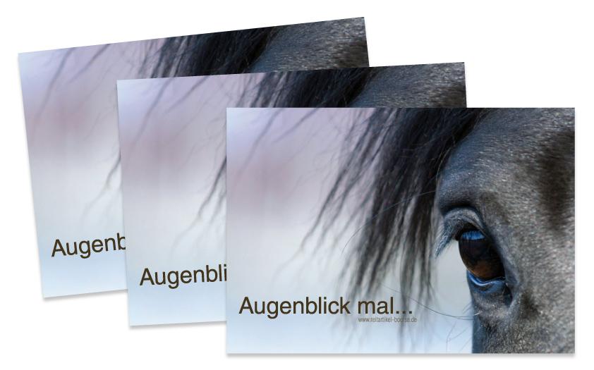 postkarte-reitartikel